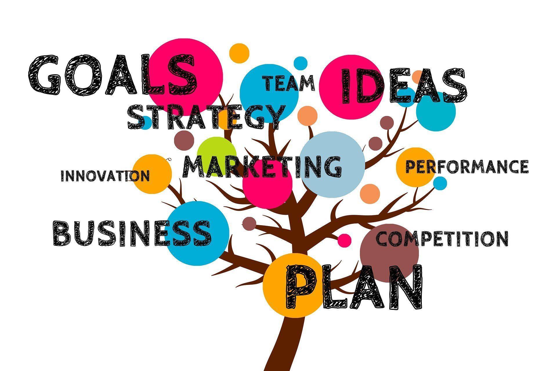 Estrategia startup exitosa